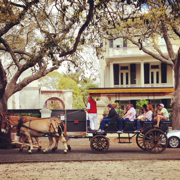 Horse and carriage in Charleston, South Carolina